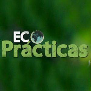 ECOPRACTICAS